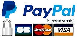 Logo paypal 1